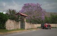 antigua-guatemala-15