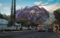 antigua-guatemala-21